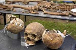 Powązki: szczątki 13 osób odnaleziono podczas ekshumacji