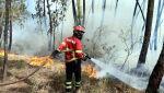 Pożary w Portugalii (PAP/EPA/ANTIONIO JOSE)