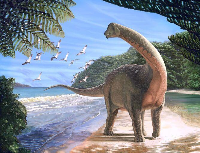 Tak mógł wyglądać mansurazaur, którego szczątki odkryto ona Saharze (ryc. Andrew McAfee, Carnegie Museum of Natural History)